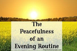 The Peacefulness of an Evening Routine