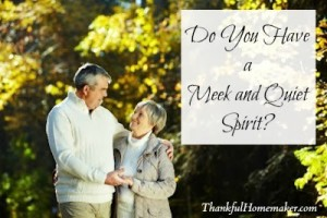 Do You Have a Meek and Quiet Spirit?