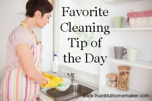 My Favorite Cleaning Tip of the Day