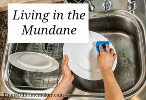 Living in the Mundane