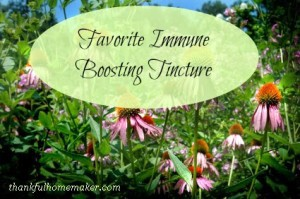 Favorite Immune Boosting Tincture