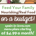 Spain in Iowa's Traditional Menu Plan on A Budget