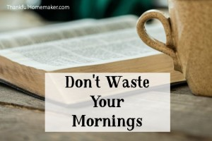 Don't Waste Your Mornings
