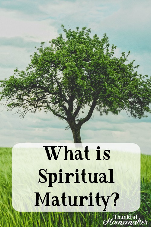 What does it look like to be a mature Christian? #spiritualmaturity #fruitofthespirit @mferrell