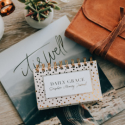 Scripture Memory Cards Daily Grace Company