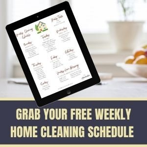 WEEKLY HOME CLEANING SCHEDULE SIDEBAR AD